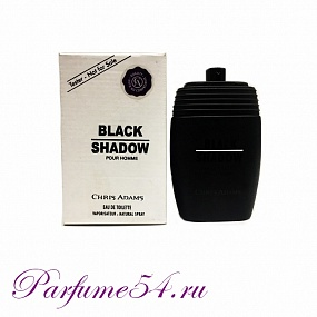 Chris Adams Black Shadow Pour Homme TESTER 100 мл