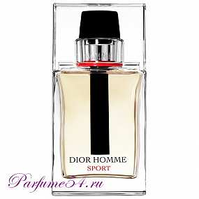 Christian Dior Homme Sport TESTER 100 мл