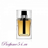 Christian Dior Homme TESTER 100 мл
